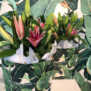lilly palm bag deal-431-757